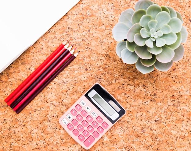 Planta verde cerca de calculadora, papel y lápices.