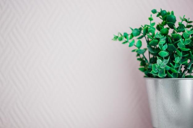 Planta verde en un cubo de metal sobre un fondo rosa, espacio de copia