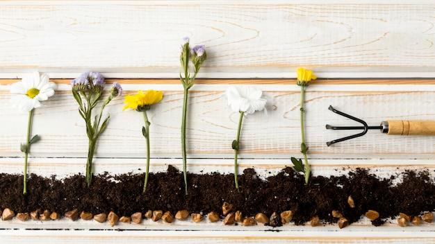 Plantación de flores laicos plana