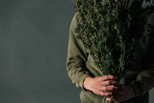 Los plantadores sostienen árboles de cannabis sobre un fondo gris.