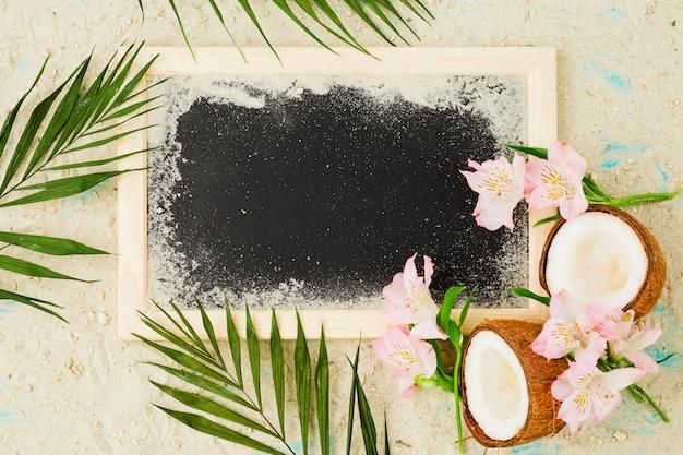 Plantar hojas cerca de cocos y flores entre la arena cerca de la pizarra