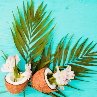 Plantar hojas y cocos cerca de flores frescas.