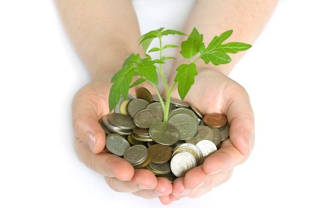 Plantar en monedas
