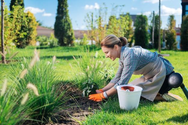 Plantar en el suelo. feliz mujer atractiva sonriendo ampliamente mientras pone una pequeña planta verde en el suelo por primera vez en su vida