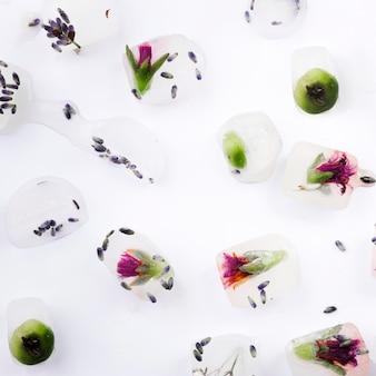 Plantas y bayas en cubitos de hielo.