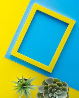 Plantas decorativas con marco amarillo.