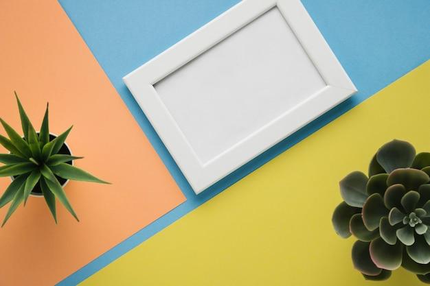 Plantas decorativas y marco minimalista blanco.