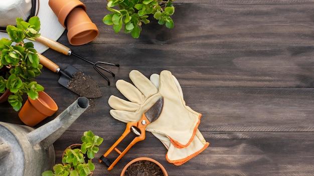 Plantas herramientas de jardinería cerrar