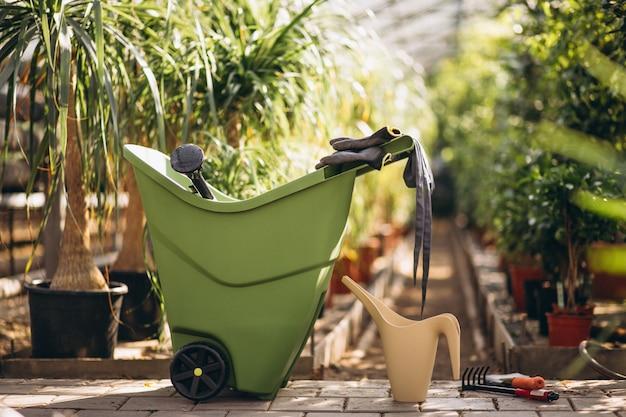Plantas en invernadero con herramientas agrícolas.