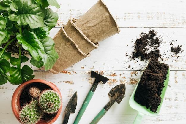 Plantas en macetas; macetas de turba; suelo y herramientas de jardinería en mesa de madera.