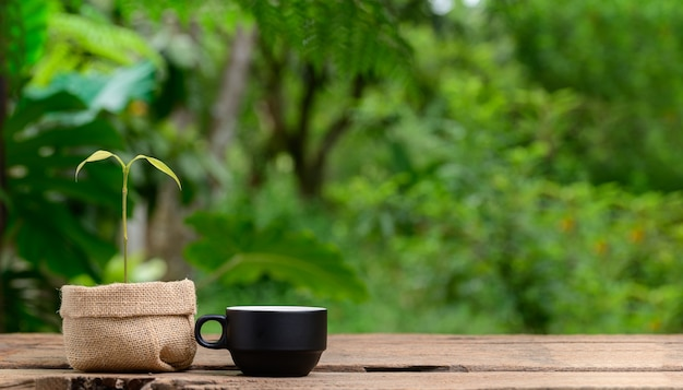 Plantas en macetas de tela y tazas de café.