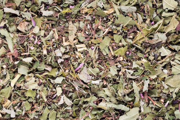 Plantas medicinales de té de hierbas, homeopáticas.