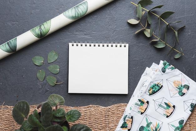 Plantas y papeles