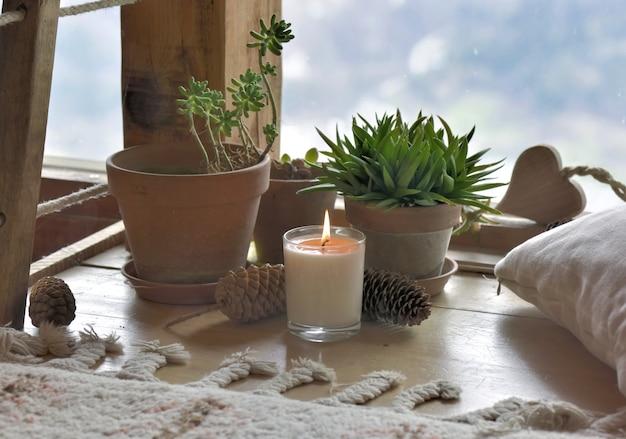 Plantas y vela delante de cristal de vidrio.