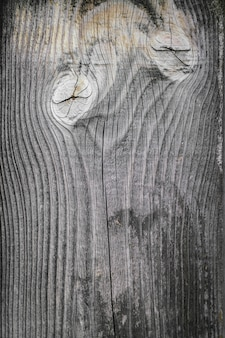 Plantilla de grunge en blanco marrón de madera