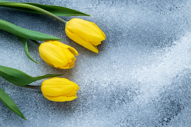Plantilla de vacaciones con tulipanes amarillos en tablero gris con textura en mal estado. decoración marco floral