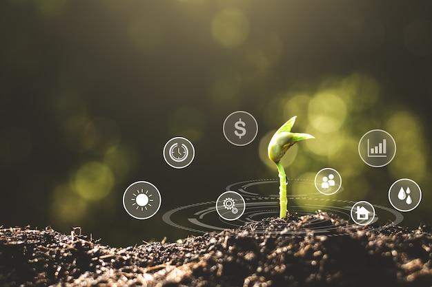 Las plántulas crecen del suelo rico y tienen un icono adjunto a los nutrientes necesarios para el crecimiento de las plantas.