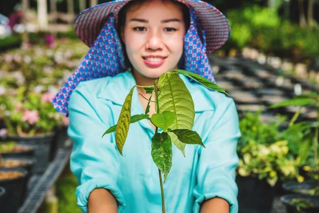 Plántulas de flores de invernadero. la mano de la joven mujer sosteniendo una planta de árbol de flores en una maceta en la mano, agricultura jardinería.