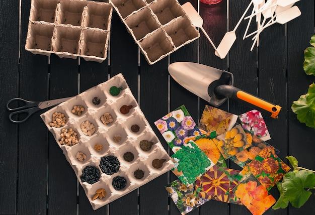 Plántulas en macetas que crecen en macetas biodegradables sobre fondo de madera con espacio de copia, vista desde arriba
