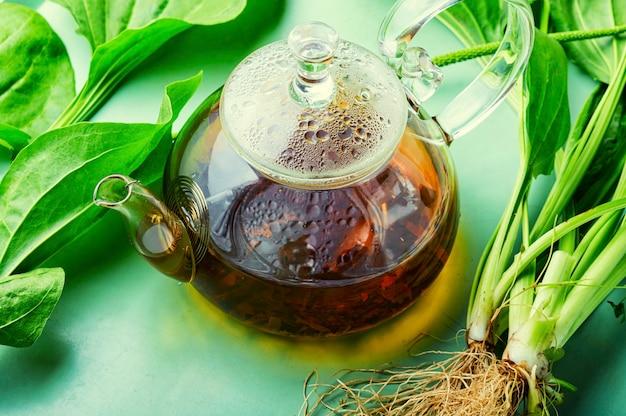 Plátano en la medicina herbal, hierbas homeopáticas