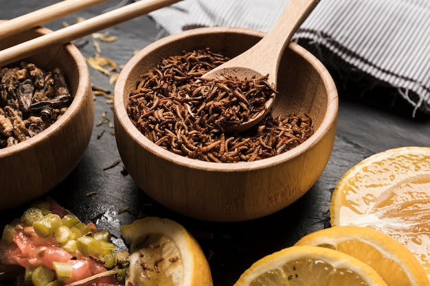 Plato asiático con insectos comestibles.