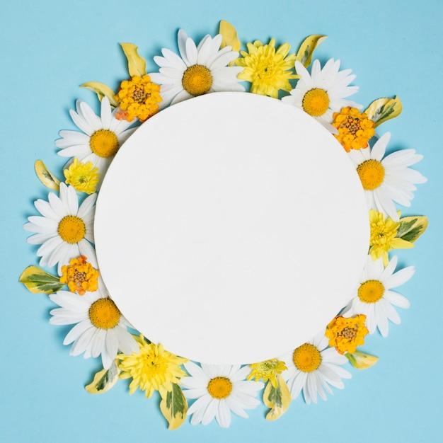 Plato en la composición de maravillosas flores de colores
