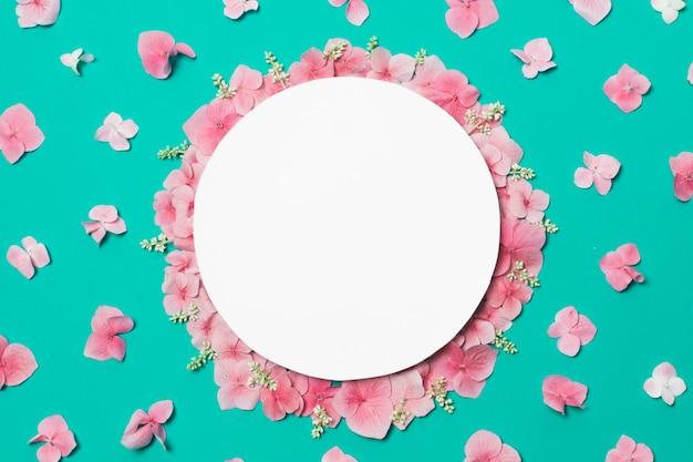 Plato sobre la composición de maravillosas flores y plantas de rosa