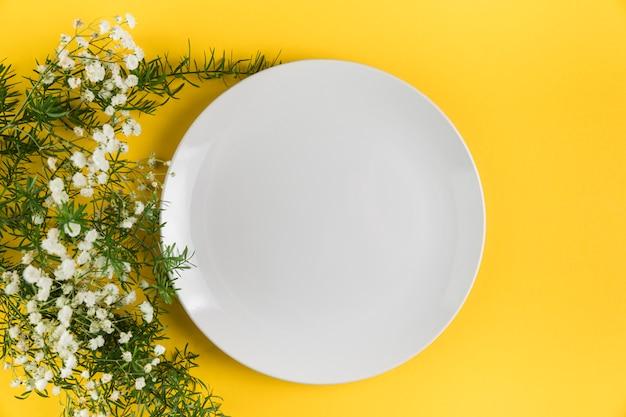 Plato vacío blanco cerca de las flores de gypsophila sobre fondo amarillo