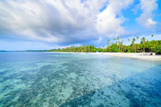 Playa de arena blanca con palmeras de coco agua turquesa transparente, destino de viaje tropical, playa desierta sin gente - islas kei, molucas, indonesia