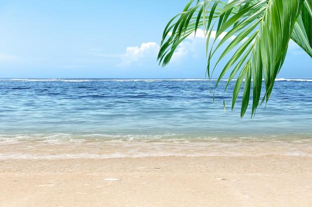 Playa de arena con hoja de palma verde y vista al mar azul