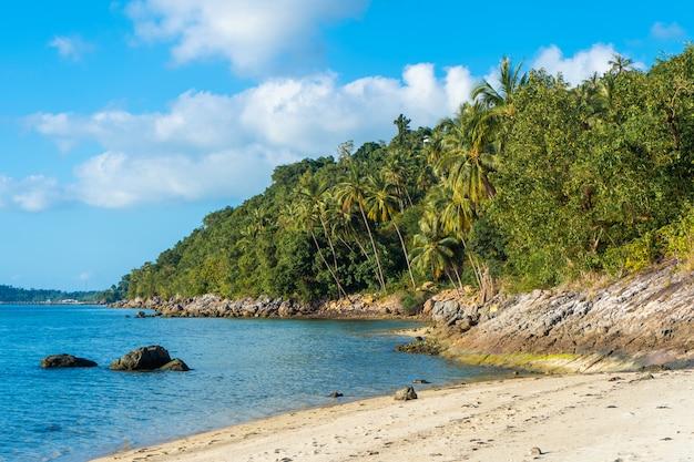 Playa de arena de una isla tropical desierta paradisíaca. las palmeras sobresalen en la playa. arena blanca. agua azul del océano. descansa lejos de las personas