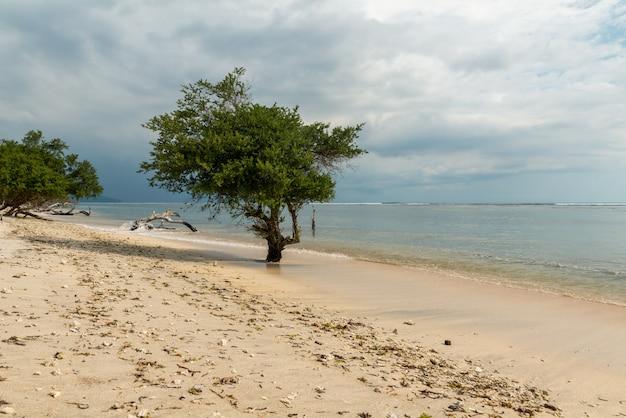 Playa indonesia vacía