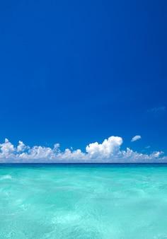Playa y mar tropical