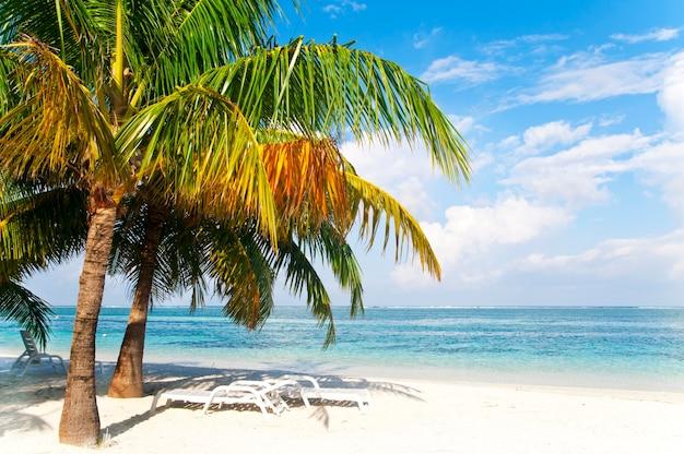 Playa tranquila despoblada