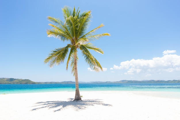Playa tropical en coron, filipinas