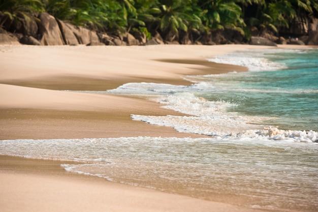 Playa tropical en la isla de mahe seychelles en un día soleado