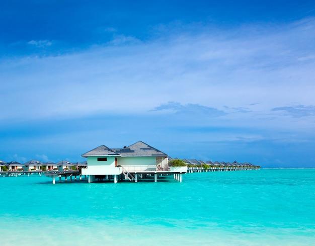 Playa tropical en maldivas con pocas palmeras y laguna azul.