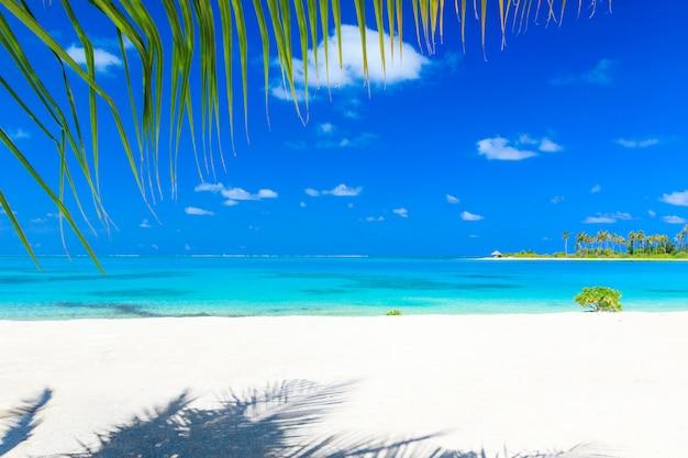 Playa tropical en maldivas