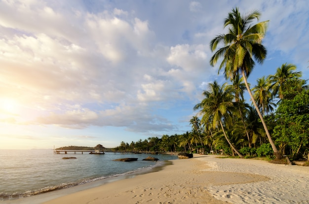 Playa tropical con olas de mar y palmeras de coco y cielo nublado increíble en puesta de sol en phuket, tailandia. concepto de verano, viajes, vacaciones y vacaciones