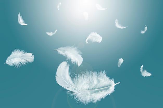 Pluma blanca flotando en el cielo.
