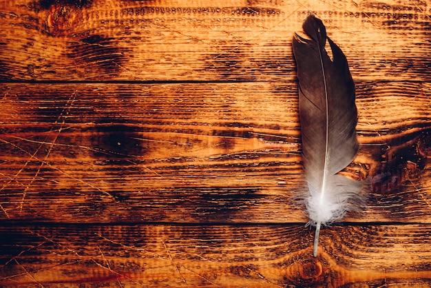 Pluma de halcón sobre mesa de madera vieja. copia espacio