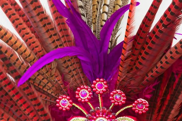 Plumas y bordados con brillantes para el carnaval.