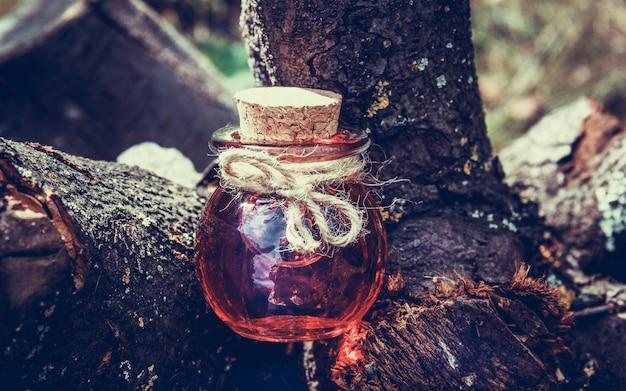 Poción de brujería en el bosque