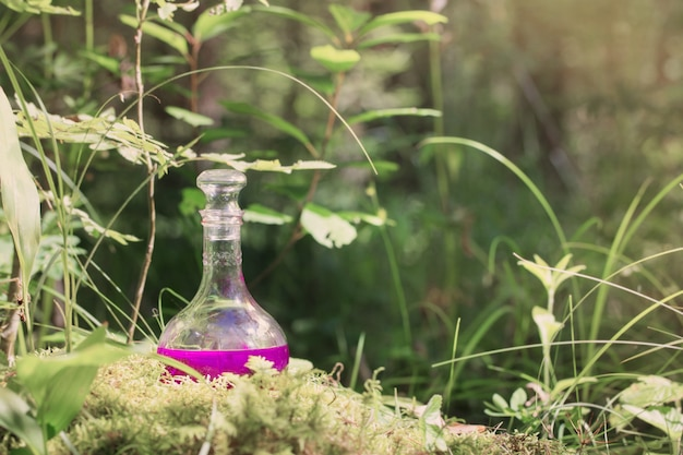 Poción mágica en botella en bosque