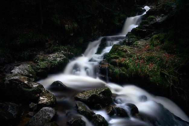 Una poderosa cascada en un bosque cerca de formaciones rocosas cubiertas de musgo