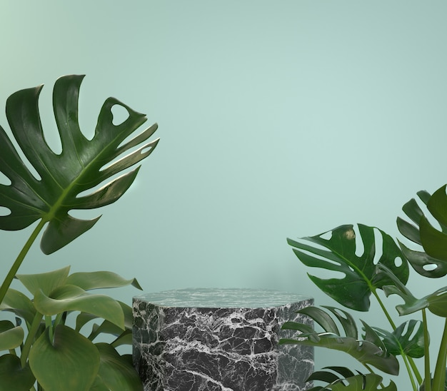 Podio de mármol negro de maqueta con plantas tropicales de monstera sobre fondo de menta render 3d