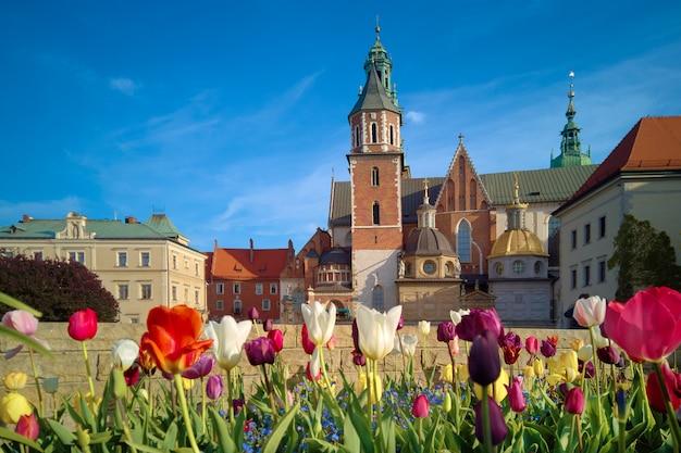 Polonia, cracovia, flores delante de wawel