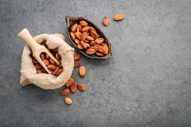 Polvo de cacao y habas del cacao en el fondo de piedra.