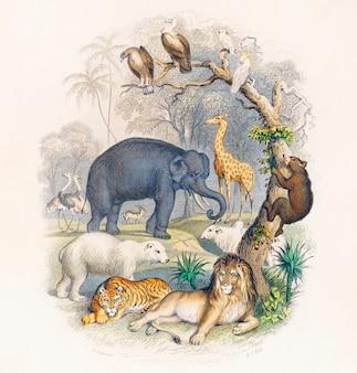 Portada de una historia de la tierra y naturaleza animada (1820) de oliver goldsmith.
