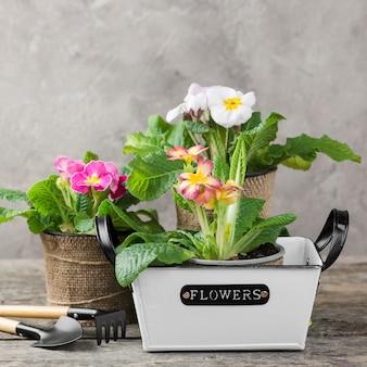 Poste de flores de flor con herramientas de cuidado